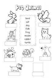 english worksheet pet animal 1 pinterest vocabulary
