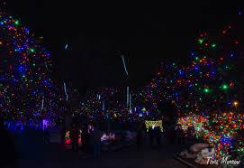 denver zoo lights hours zoo lights