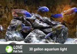 30 led aquarium light best 36 inch led aquarium lights for 30 50 gallon fish tanks reviews