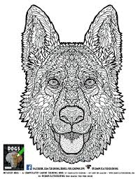 Coloring Free Intricate Coloring Pages Hard To Printable Sheets Free Intricate Coloring Pages