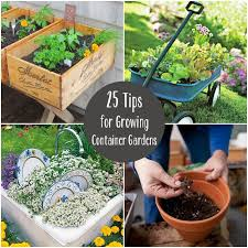 Garden Tips And Ideas Organic Gardens Network 9 Pinteresting Container Garden Tips And