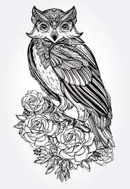 owl with roses vintage style vector stock vector