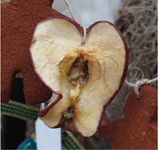 25 days of dried apple ornaments about a