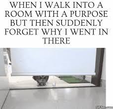 Funny Meme Gifs - funny gif with meme text gif imglulz