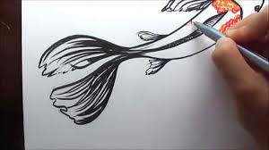 simple3d fish sketch how to draw koi fish in water colour simple