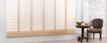 best blinds for day and night