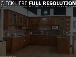 design of kitchen cabinets pictures cabinet design of cabinet for kitchen kitchen cabinet design