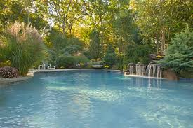 Lagoon Style Pool Designs by Natural Swimming Pool Designs Officialkod Com