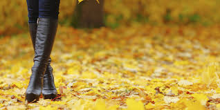 Why Fall Is The Best Season by 12 Reasons Why Fall Is The Best Season