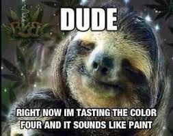 Dragon Sloth Meme - whispering sloth dragon