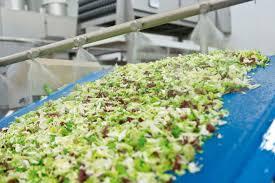 bonduelle si e social mio vor ort bei bonduelle knackfrische bunte salate aus der tüte mio