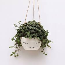Hanging Ceramic Planter by White Ceramic Hanging Planter Face Plant Pot By Berriesforbella