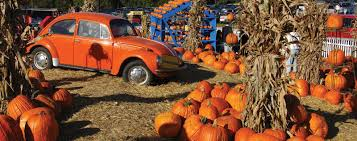 festivals and fairs in virginia fairfax county va