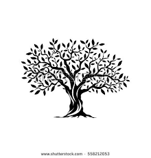 tree silhouette stock images royalty free images vectors