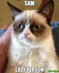 Lazy People Memes - sam lazy person meme grumpy cat 2798 memeshappen
