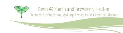 makeup artistry certification fawn harris licensed aesthetician home northton ma