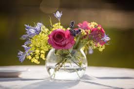 rent a fishbowl glass flower vase