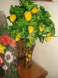 Mango Boom 1 stks zak mango zaden mini mango boom zaden bonsai boom zaad