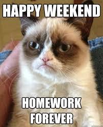 Happy Weekend Meme - happy weekend homework forever grumpy cat 3 quickmeme