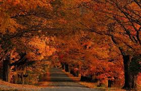 Vermont where to travel in november images Romantic escape in november travel oven jpg