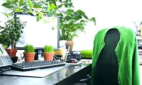 Small Desk Plants Indoor Desk Plants Large Size Of Office Desk Plants Mesmerizing
