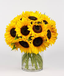 sunflower bouquet sizzling sunflower bouquet in paul mn iron violets design