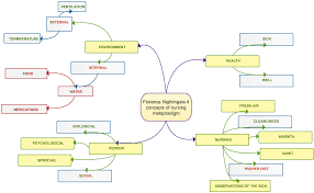 Nursing Concept Map Nursing Theory Mind Map Creately