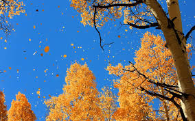 fantasy autumn wallpaper autumn sky wallpaper 6948074