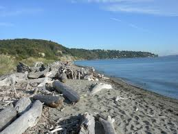 Alki Beach Trail West Seattle by Seattle Cvnu Location Rpg Comic Vine