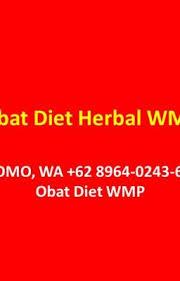 Obat Wmp promo wa 62 8964 0243 627 obat diet wmp harga obat diet herbal