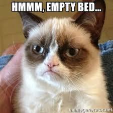 Bed Meme - hmmm empty bed grumpy cat meme generator