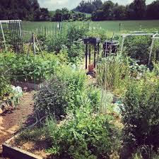 garden planning garden planning horn farm center for agricultural education