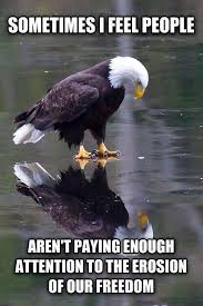 Funny Eagles Memes - can we make this into a meme the sad eagle imgur