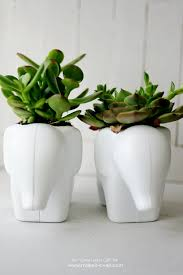 How To Make A Succulent Planter by Toy Elephant Succulent Planter Make It And Love It