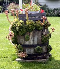Cool Planters Interesting Garden Planter Gardening With Soul