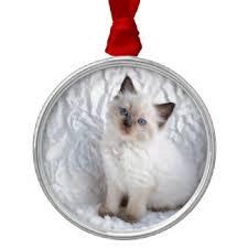 ragdoll cat ornaments keepsake ornaments zazzle