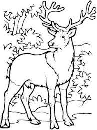 john deere coloring pages kiddie crafts pinterest atividades