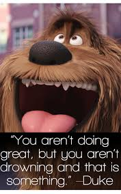 Funny Memes About Life - the secret life of pets funny pictures and quotes