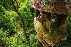 photo gallery for finca bellavista treehouse communityfinca bellavista