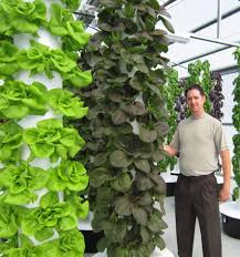 Aeroponic Vertical Garden Scissortail Farms Future Growing Llc