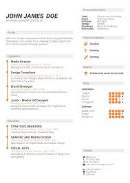 kinds of resume format what is the best cv format how to write a cv cv template