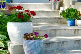 Gardening Trends 2017 14 Consumer Gardening Trends That Have Stood The Test Of Time