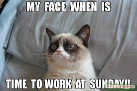 Sunday Meme - my face when is time to work at sunday meme grumpy cat bed
