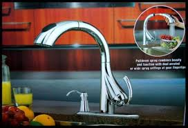 water ridge kitchen faucet water ridge pull kitchen faucet 205674 touch on kitchen