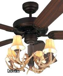 Western Ceiling Fans With Lights Wildlife Ceiling Fans Deer Interesting Fan With Blades And
