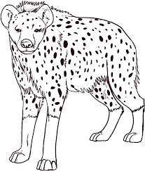 Hyena Coloring Page Animals Town Animals Color Sheet Hyena Color Page