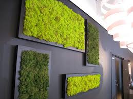 Pictures For The Bathroom Wall Moss Frame For The Bathroom Wall Condo Shopping List Pinterest