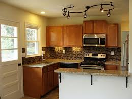 Kitchen Cabinet Colours Astounding Small Kitchen Layouts With Purple Cabinet Paint Colors