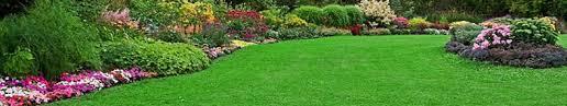 Sod Estimate by Turf Grass Sod Prices Estimate All Sod Farm
