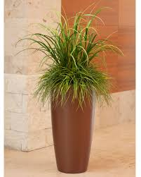 Plants For Office Mixed Artificial Grass Planter For Office Decor At Officescapesdirect